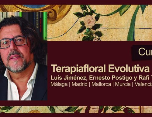 TERAPIAFLORAL EVOLUTIVA EN PALMA DE MALLORCA cursos y talleres intensivos para profesionales